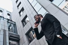 Confident business expert. stock photos