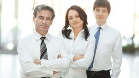 Confident business team in the background of the office royalty free stock photo