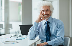 Confident businessman posing with hand on chin Stock Image