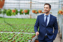 Confident businessman standing in the greenhouse Royalty Free Stock Photos
