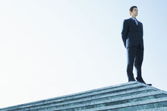Confident Businessman Standing On Marble Staircase Stock Images