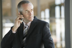 Confident Businessman Using Cell Phone Royalty Free Stock Photos