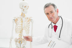 Confident doctor explaining the spine in office Stock Images