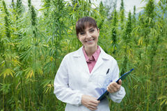 Confident doctor posing in a hemp field stock photos