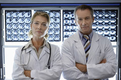 Confident Doctors By Brain Scans Stock Images