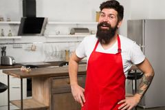 Confident and experienced chef. Hipster in kitchen. Mature male. Bearded man cook. Restaurant or cafe cook. Bearded man royalty free stock images