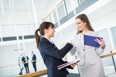Female Professional Shaking Hands With Colleague In Office. Confident female professional shaking hands with colleague while standing in office royalty free stock photo