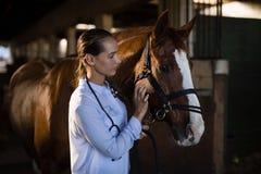Confident female vet stroking horse stock images