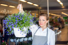 Confident Florist Holding Flower Plant In Shop Stock Photography