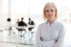 Free Confident Lady Business Coach Team Leader Posing In Office, Port Stock Photos - 132561073