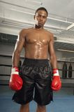 Confident Male Boxer Standing Royalty Free Stock Images
