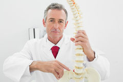 Confident male doctor explaining spine in office Royalty Free Stock Photography
