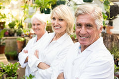 Confident male and female scientists at greenhouse. Portrait of confident male and female scientists standing with arms crossed at greenhouse Royalty Free Stock Photography