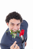 Confident Man Seducer In A Suit Holding A Red Rose In His Mouth Stock Image