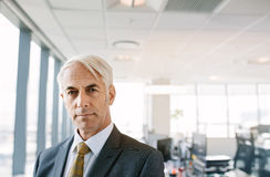Confident mature businessman in office royalty free stock photo
