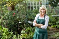 Confident mature gardener standing by plants Stock Image
