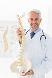 Confident mature male doctor holding skeleton model Stock Photography