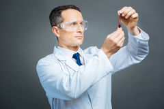 Confident medical professional examining blood sample. Allergy testing. Waist up shot of a mature doctor wearing glasses holding a test tube with a blood sample stock photography