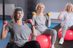 Confident persistent women exercising with dumbbells. Fitness equipment. Confident persistent nice women sitting on fitness balls and exercising  dumbbells while Stock Photography