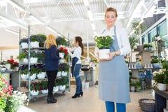 Confident Salesgirl Holding Flower Pot In Florist Royalty Free Stock Photos
