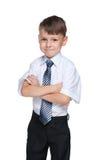 Confident school boy Royalty Free Stock Photo
