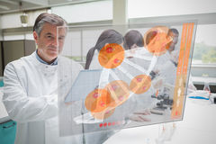 Confident scientist working with tablet and futuristic interface stock photography