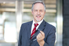 Confident senior business man portrait Royalty Free Stock Image