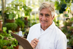 Confident senior male scientist holding clipboard. Portrait of confident senior male scientist holding clipboard while standing at greenhouse Royalty Free Stock Images