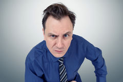 Confident serious leader boss in shirt and tie Royalty Free Stock Photography
