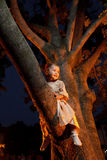 Confident small girl in tree. Small girl in dress siting in tree Stock Photo