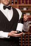 Confident sommelier. Stock Images
