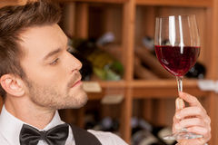 Confident sommelier. Royalty Free Stock Photo