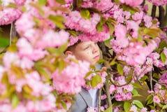 Confident stylish child enjoy warm spring day. Boy fashionable teen posing near sakura. Child pink flowers of sakura. Tree background. Guy enjoying cherry royalty free stock image