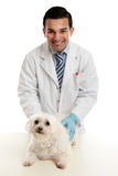 Confident vet with pet dog Royalty Free Stock Images