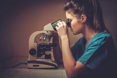 Confident veterinarian examining the test under the microscope in Veterinary clinic. Stock Photo