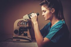 Confident veterinarian examining the test under the microscope in Veterinary clinic. Stock Image