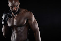 Confident young male boxer practicing boxing. Portrait of confident young male boxer practicing boxing. African boxer looking at copy space Stock Image