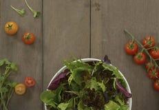 Configuração do plano dos vegetais imagens de stock royalty free