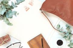 Configuração elegante do plano da cor natural Fotos de Stock Royalty Free