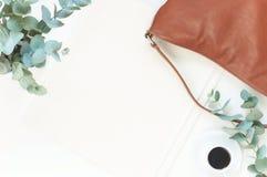 Configuração elegante do plano da cor natural Imagem de Stock Royalty Free