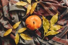 Configuração feliz do plano do Dia das Bruxas ou da ação de graças abóbora de outono com co Foto de Stock Royalty Free