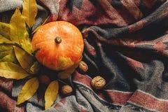 Configuração feliz do plano do Dia das Bruxas ou da ação de graças abóbora de outono com co Imagens de Stock Royalty Free