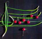 Configuração lisa do alimento criativo das cerejas vermelhas e das cebolas verdes arranjadas como o pessoal da música com notas d imagem de stock royalty free