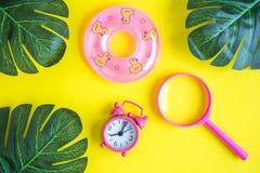 Configuração lisa do brinquedo pequeno do flutuador da piscina com despertador e as folhas verdes com a lente de aumento isolada  imagens de stock