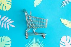 Configuração lisa do carrinho de compras e das folhas coloridos abstratos foto de stock