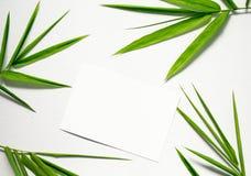Configuração lisa do zen com folha verde e Livro Branco Arranjo floral da folha de bambu no fundo branco Fotografia de Stock Royalty Free