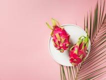 Configuração lisa tropical com folhas de palmeira e coco fotografia de stock royalty free