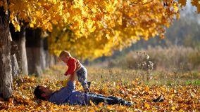 Configuração nova do pai nas folhas de outono e levantada a criança para o céu vídeos de arquivo