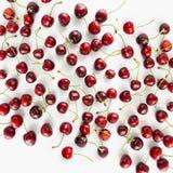 A configuração vermelha fresca das cerejas no branco isolou o fundo com espaço da cópia Fundo das cerejas Cereja madura em um fun Fotografia de Stock