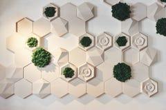 Configuración de Eco Café verde con las plantas hidropónicas en la fachada Foto de archivo